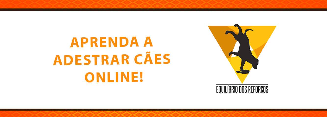 Capa-SER-Online-BannerSite